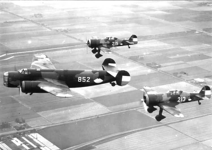 Fokker delivered 36 D.XXI's to the NethAAS. No 213 used its guns in anger in the first two days of the invasion of the Netherlands (May 10-14, 1940)