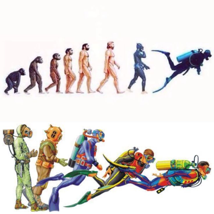 Evolution of dive