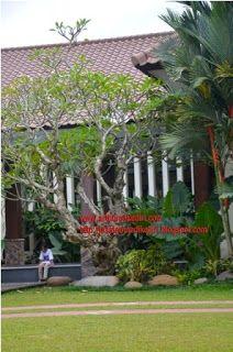 Design pembuatan jasa tukang seni taman,relief,air terjun,kolam, taman minimalis,kolam renang.: tukang buat taman minimalis di kediri-taman minima...