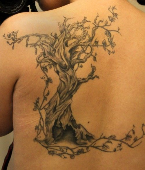 dead tree tattoos tree tattoo designs tattoos pinterest inspiration search and design. Black Bedroom Furniture Sets. Home Design Ideas