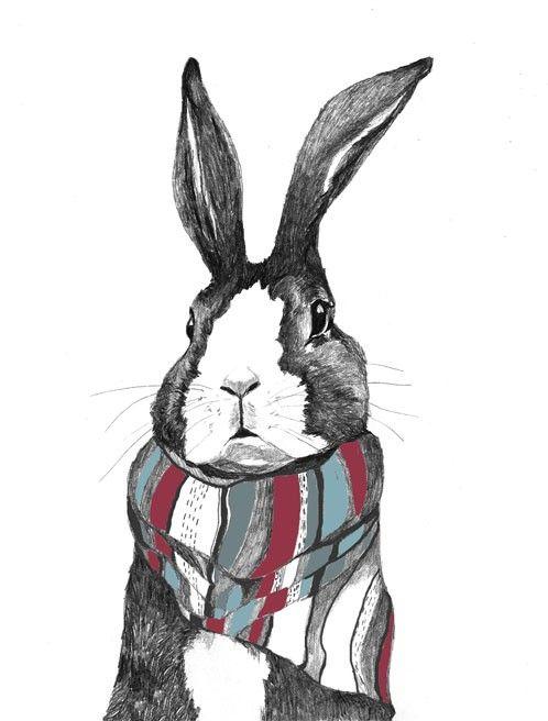Rabbit Art  Rabbits Love Scarves  Print of by corelladesign, $20.00