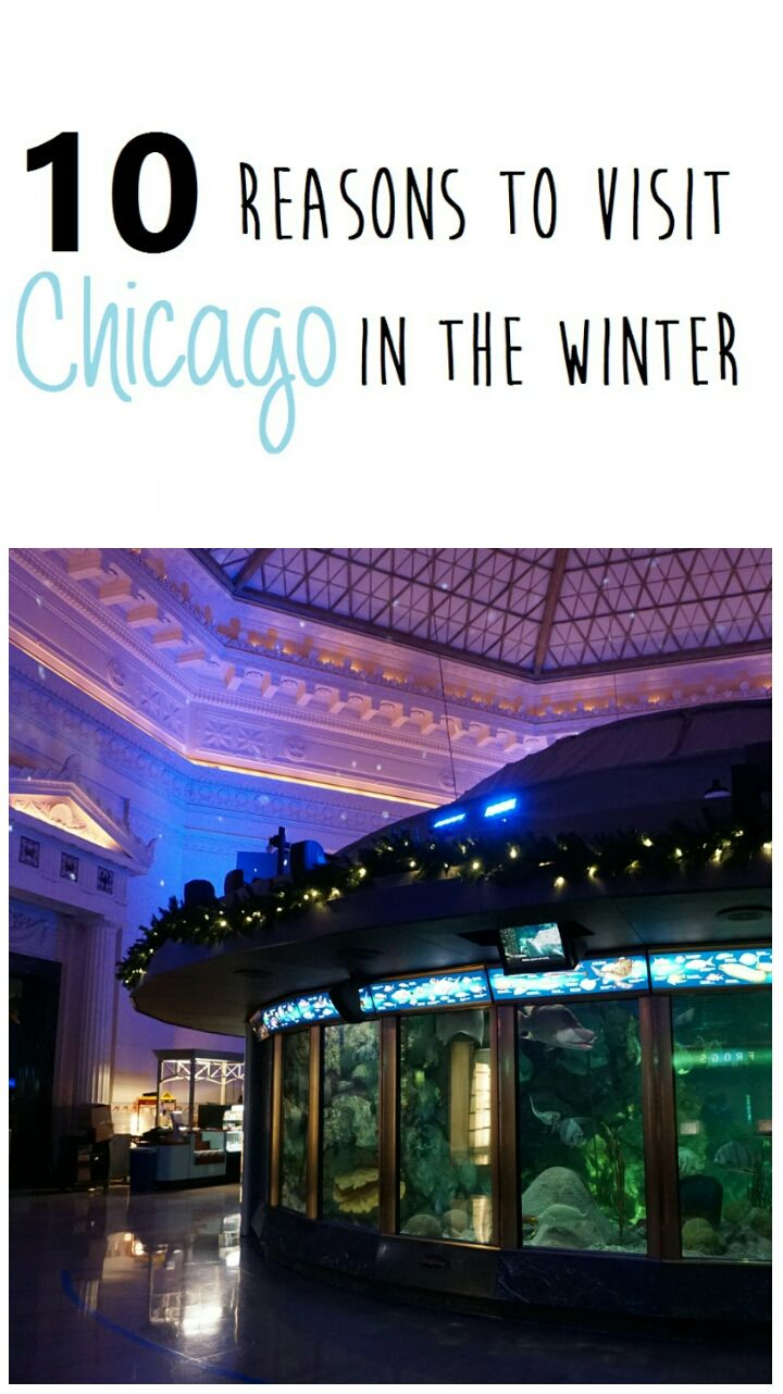 Visit Chicago in the winter. Budget travel tips. Save money in Chicago. CityPASS