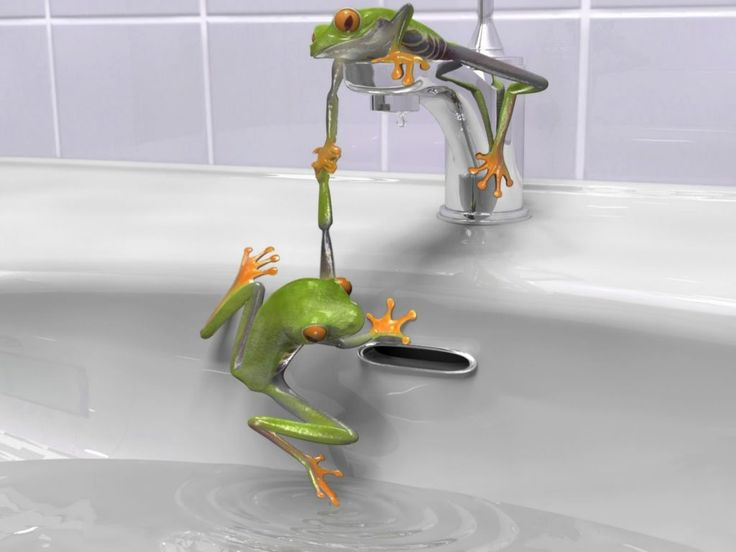 Tropical Frog Bathroom Accessories