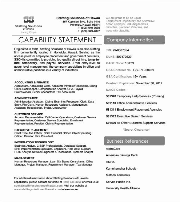 Capability Statement Template Doc Beautiful 14 Pdf Word Page Mission Personal Capacity