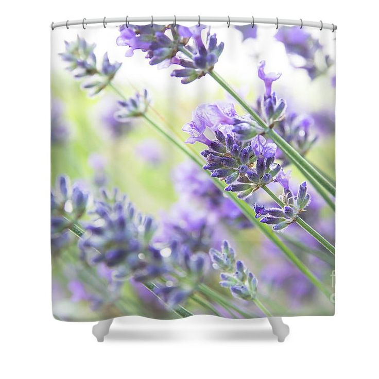 Decorate your bathroom with #lavender • shower curtains #wallart and #towels available through my website!
