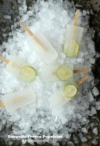 Zooquila Fresca Popsicles and the 25th Do at the Denver Zoo