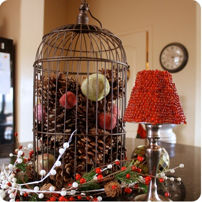 Holiday Decor...birdcage filled with pinecones and frosted decorative fruit.