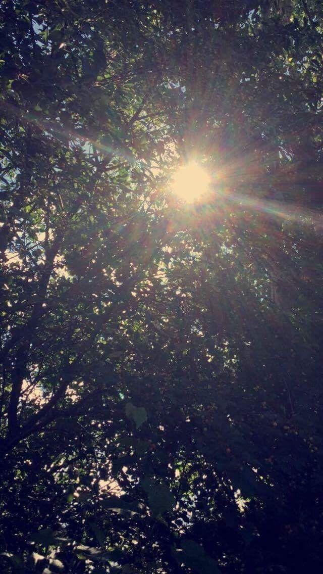 Let your light shine☀️