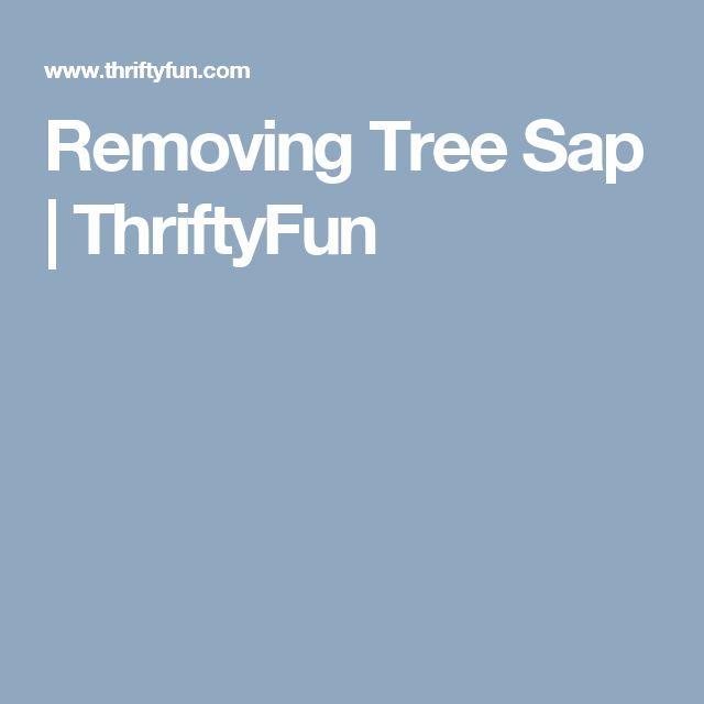 Removing Tree Sap | ThriftyFun