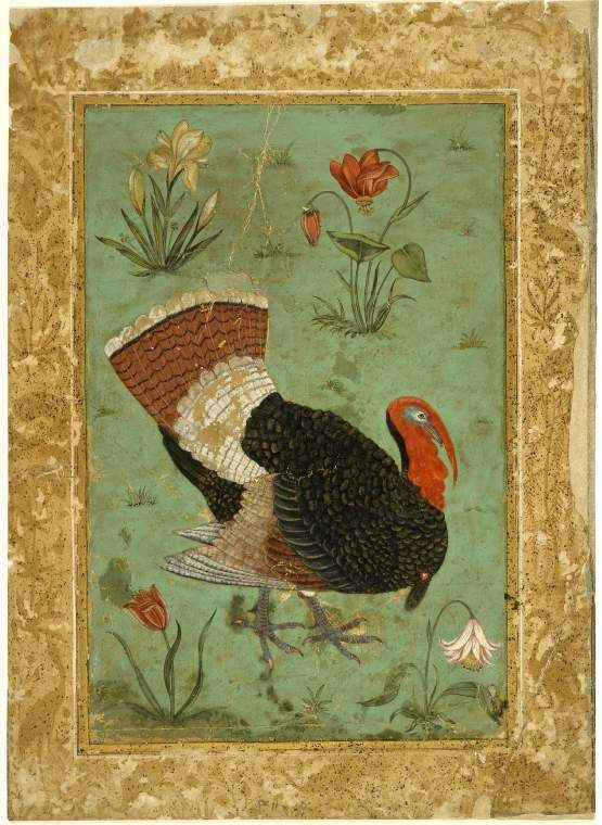 Title:  A turkey surrounded by four flowering plants  Maker:  Unknown; miniaturist  Category:  miniature (painting)  School/Styl...