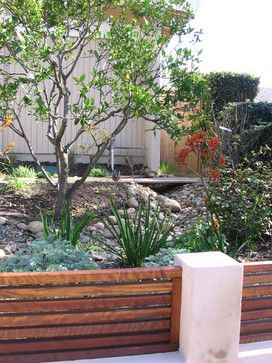 Drought Tolerant Garden Design Design Ideas, Pictures, Remodel, and Decor - page 78