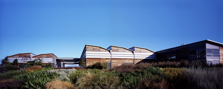 Spy Valley winery, Marlborough, NZ
