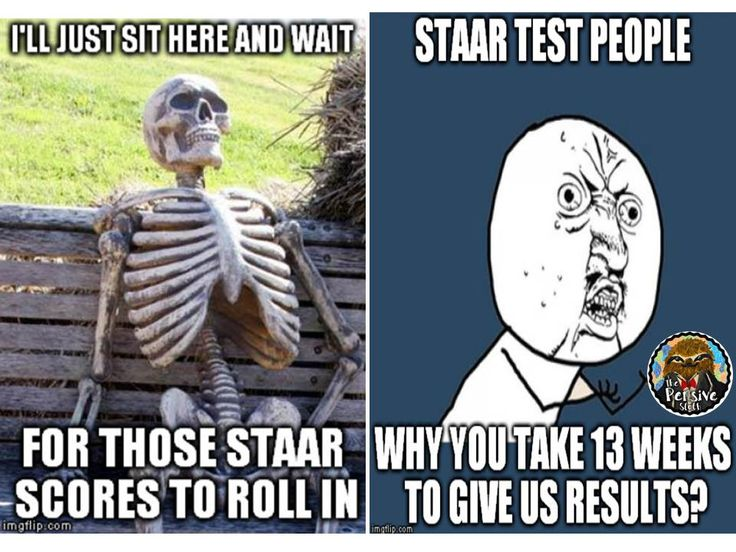 Funny Memes Quiz : The best images about pensive sloth s on