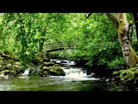 RELAXING Tranquil Music-Nature Sounds-Flowing Water-Birds Song-Grieg-klassisk musik-lugn musik - http://music.ritmovi.com/relaxing-tranquil-music-nature-sounds-flowing-water-birds-song-grieg-klassisk-musik-lugn-musik/