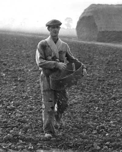 Man sowing seeds. The Museum of English Rural Life of Reading University houses the most comprehensive national collection of objects, books and archives relating to the history of food, farming and the countryside.