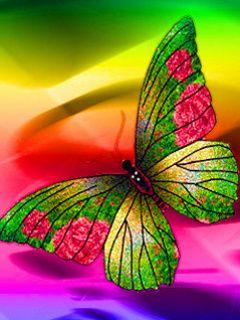 Pin By Lori Hogan On Beautiful Butterflies