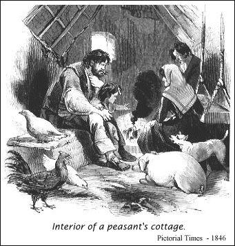 The Potato Famine