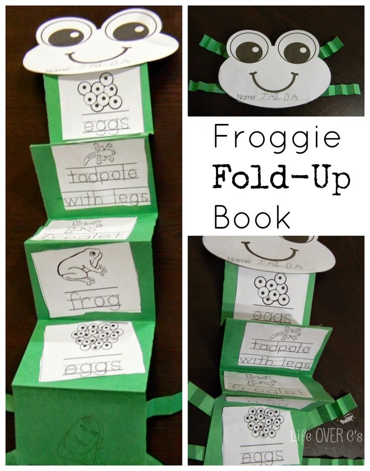 Life Over C's: 13 Days of Learning Printables: Day One- Three Frog Freebies