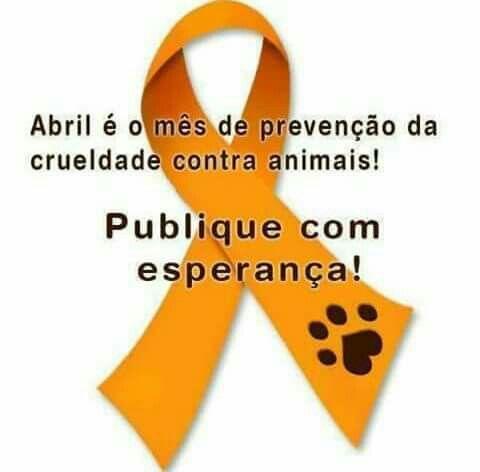Diga NÃO a crueldade animal