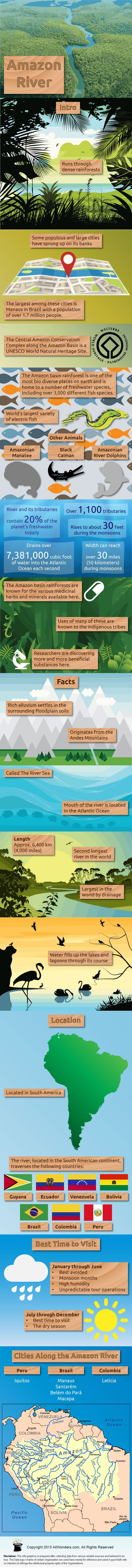 Amazon River Infographic