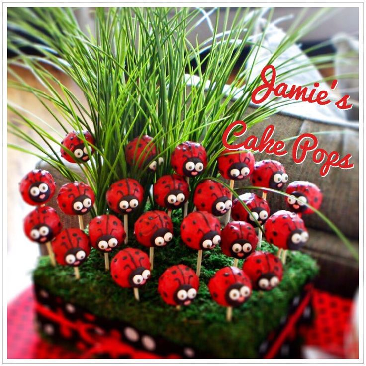 Ladybug / Lady Bug Cake pops by JamiesCakePops on Etsy https://www.etsy.com/listing/159472644/ladybug-lady-bug-cake-pops
