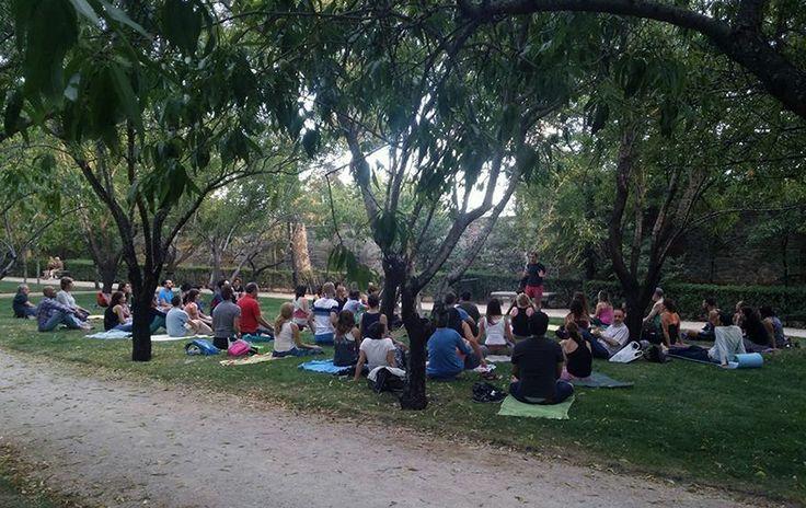 Clase de yoga y meditación en el parque del Retiro (Madrid) impartida por Chema Muela fundador de Buho Zen. Budismo Gay en Madrid.