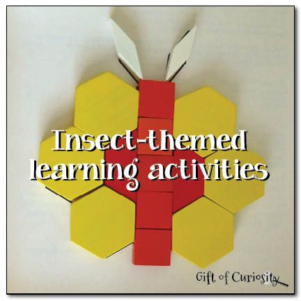 50 Activities for Playing and Learning with Insects! - The ...