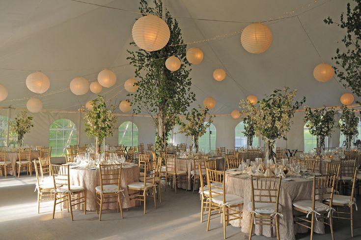 Outdoor Tent Wedding Reception Ideas Rustic Wedding Tent