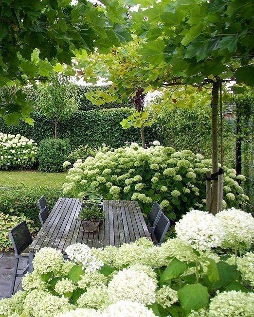 Weiße Blumen Garten # ländlichen Garten # Ideen # gardendeco #gartendeco #ide # …   – Garten Gestaltung Blume