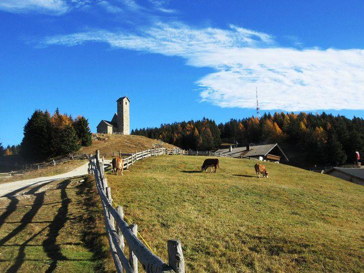 Mia foto scattata al Monte San Vigilio / Vigiljoch - Lana   Stefano Mazzatenta (@ste_rediquadri)   Twitter