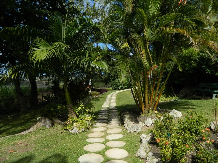 Orchid World & Tropical Flower Garden, Barbados