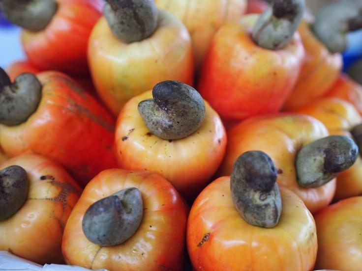 Caju Fruit