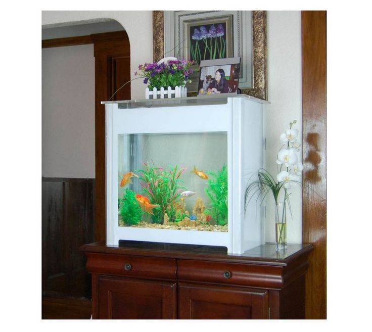 Best Acrylic Aquarium Ideas On Pinterest Fish Tanks Fish - Acrylic aquariumfish tank clear round coffee table with acrylic