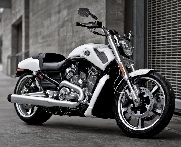 Harley !!!
