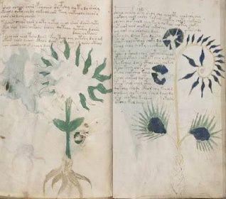 NOVÉ BOHATSTVÍ: Tajemný Vojničův rukopis obsahuje významné poselství
