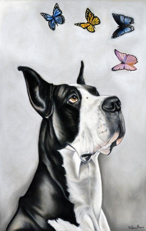 Dessin d'un chien dogue Allemand avec des papillons réalisé au pastel sec, sur pastel card. Drawing of a Great Dane dog with butterflies, made with pastel. ©Hélène Roux