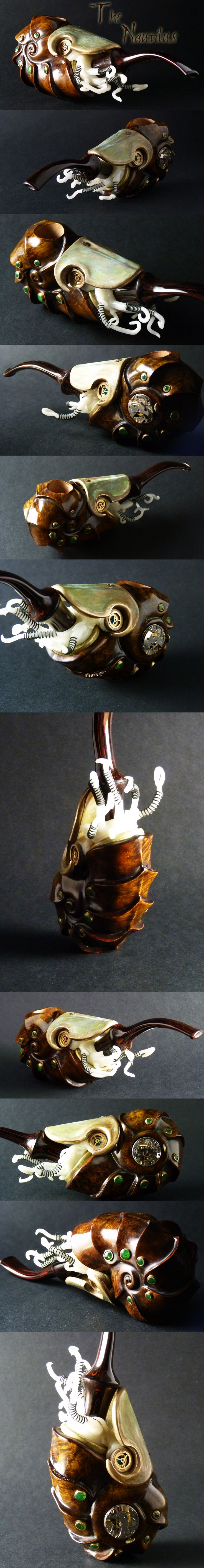 The Nautilus, by Stephen Downie. Yes, this is a pipe for smoking pipe tobacco. AWESOME.