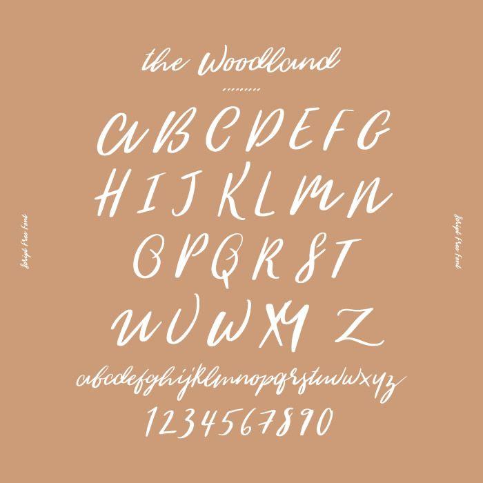 The Woodlands オシャレなデザインに取り入れたい デザイナーがこっそり教える筆記体フリーフォント7選 箱庭 Haconiwa 女子クリエーターのためのライフスタイル作りマガジン フォント フリーフォント 筆記体