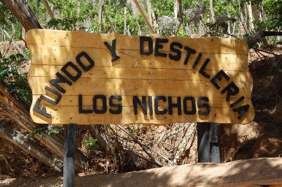 Fundo Los Nichos, Pisco Elqui, Chile - A pocos kilómetros de Pisco Elqui, camino al pueblo de Horcón, se encuentra  ... - http://turistips.com/fundo-los-nichos-pisco-elqui-chile/