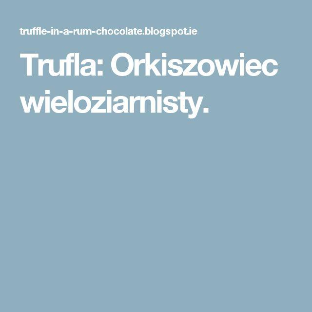 Trufla: Orkiszowiec wieloziarnisty.