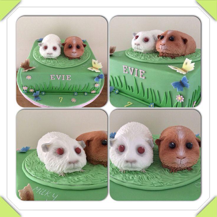 Guinea Pig Birthday Cakes Guinea Pig Edible