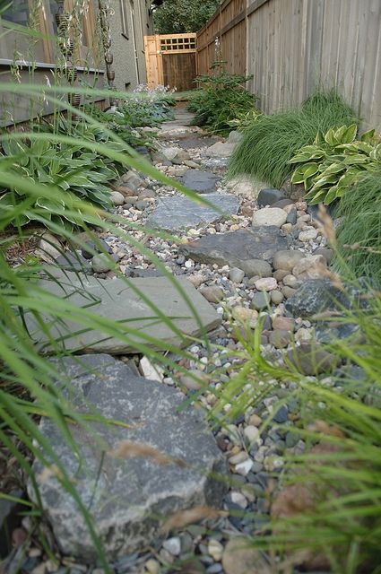 naturalistic path - ? for the side yard