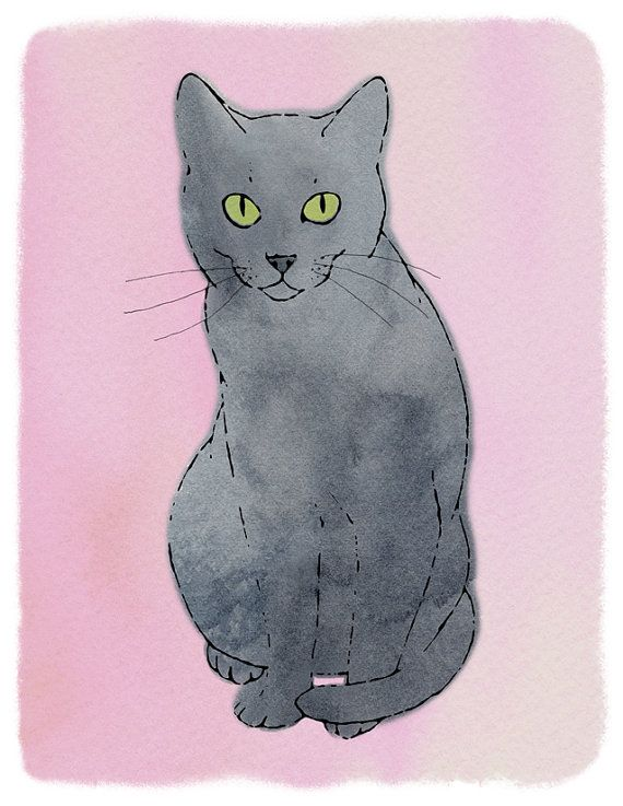 russian blue russian blue print drawing of by kerrysimmonsart