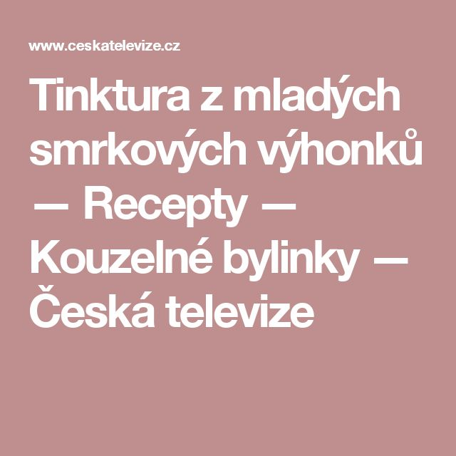 Tinktura zmladých smrkových výhonků — Recepty — Kouzelné bylinky — Česká televize