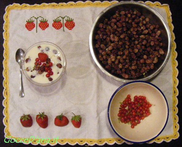 Independence day: come è andata e le ricette - colazione con kefir di soia, fragole e ribes tutto homemade (soia esclusa)
