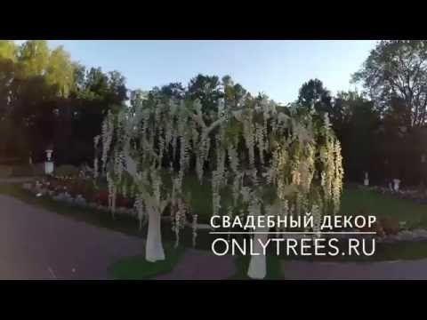 """Искусственные деревья и свадебные арки """"OnlyTrees"""": Москва на Невеста.info"""