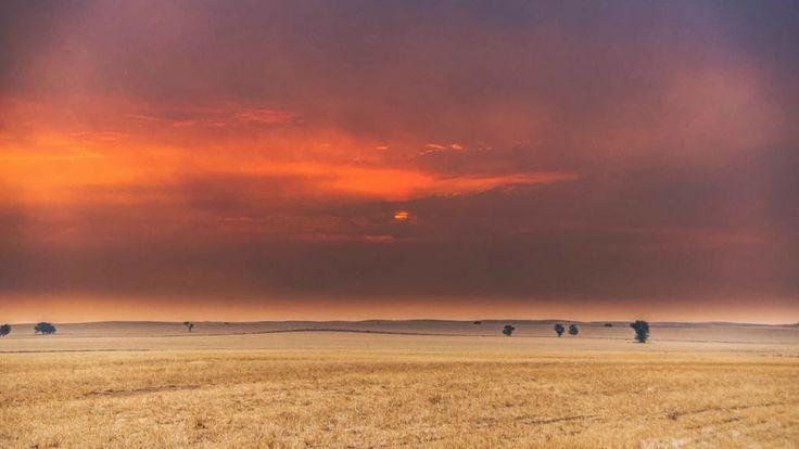 Lake Albacutya fire January 2014