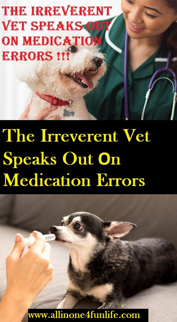 The Irreverent Vet Speaks Out On Medication Errors Dog Dogs Animal Animals Puppy Pets Doctor Love Lovedogs Error Pet Insurance Reviews Vets Pet Care