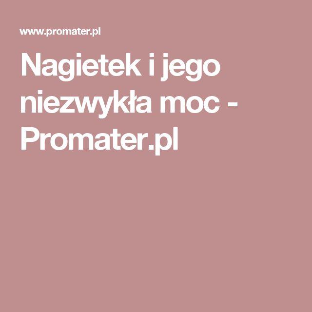 Nagietek i jego niezwykła moc - Promater.pl