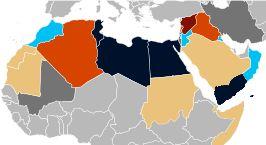 De Arabische Lente behelst een golf van opstanden, protesten en revoluties in de Arabische wereld die begon op 18 december 2010 en in de meeste landen na twee jaar weer was geluwd. Sociale media speelden een grote rol.